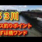 岐阜バス釣りポイント 五三川みずほ橋ワンド ブラックバス釣りスポット