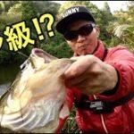 【バス釣り】池の最深部で爆湧き⁉︎入れ食い祭りでまさかの!