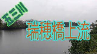 五三川   瑞穂橋上流   バス釣りポイント