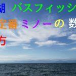 【バス釣り】琵琶湖バスフィッシング 秋の定番 ミノーの数釣り 使い方