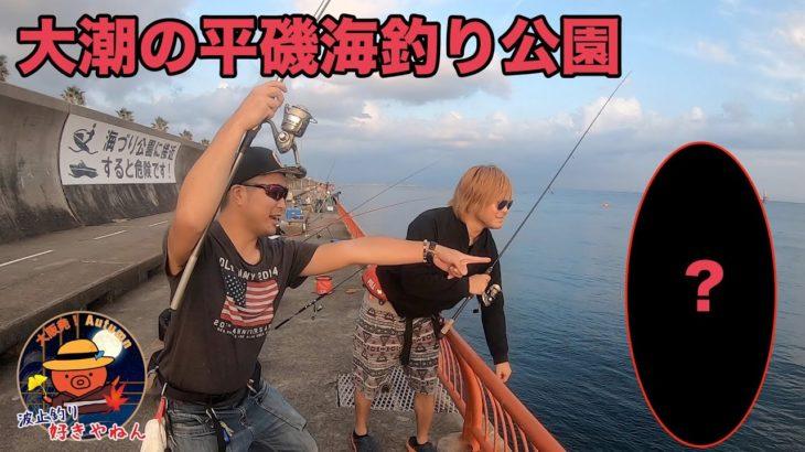 【平磯】海やない、川や。平磯海釣り公園で五目釣り 【大潮】