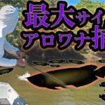 アロワナが湧きまくるスポットで世界大会最大魚を仕留めた!【告知アリ】