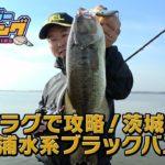 プラグで攻略!茨城県 霞ヶ浦水系 ブラックバス!! vol.8