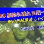 2018 09 09鮎釣れ連れ日記11鮎の伝統漁法しゃくり漁