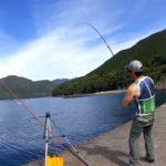 三重の堤防でウツボ狙ってぶっ込み&投げサビキ釣り【釣り日記2019】