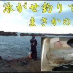 2019 5 13【磯釣り】泳がせ釣りでイカが釣れた!