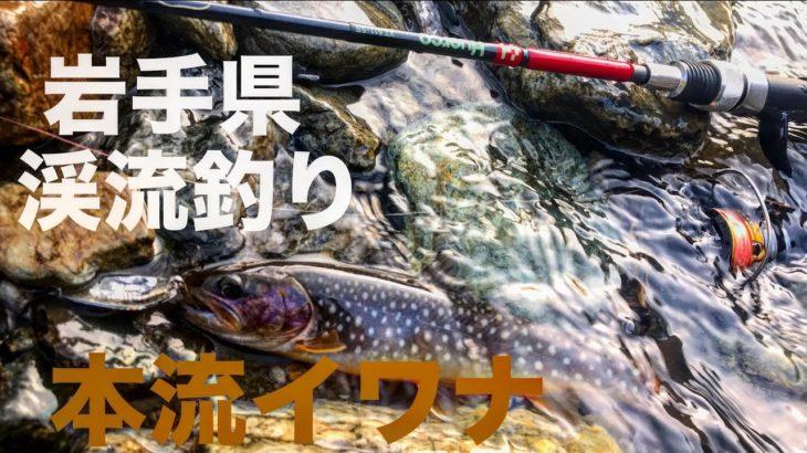 岩手県 渓流釣り 閉伊川水系 2019年4月29日 Fishing in Iwate, Japan