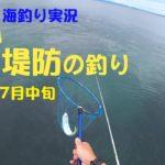 伊豆半島・木負堤防の釣り 2019年7月中旬