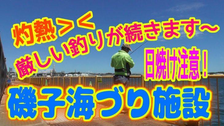 釣り動画ロマンを求めて 279釣目(磯子海づり施設)