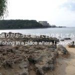 [沖縄釣り]車で通りがっかた場所で釣りをしてみた。I tried fishing in a place where I passed by car.