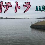 牛堀テトラ!!霞水系 メジャー P 調査!(11/27)ブラックバス釣り