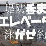 堤防呑ませ(エレベーター泳がせ釣り)RYOとTOMAの連携でついに念願叶うか!?