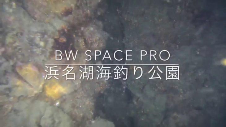 Youcan Robot 水中ドローン BW Space Pro 浜名湖 海釣り公園 岸壁夜行性生き物を水中撮影