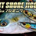 【青物】堤防で磯で釣りまshow!晩秋のライトショアジギング in 東北日本海