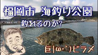 【釣り】福岡市 海釣り公園