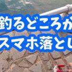 浜名湖海釣り公園で釣るどころかスマホ落としました