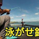 海釣り公園で泳がせ釣りしてたら、いいやつ釣れた。料理して食べました。