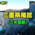 三重県尾鷲三木里で今年最後のボート釣り!(ジギング)カヤックフィッシング!