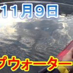 癒し系のダム【トップウォーター】