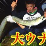 【巨大】沖縄に潜む怪物魚大ウナギを釣る!!