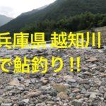 【鮎釣り】兵庫県 越知川へ行ってきました。