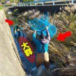 真冬の川で巨大網で挟み撃ち大作戦!