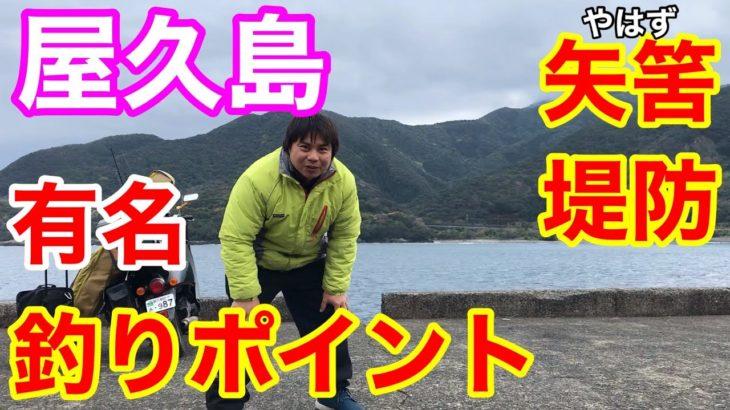 屋久島の有名【釣りポイント】矢筈堤防で釣りしてみた!