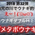 2018 第32弾 地元の川でウナギ釣り まさかまさかのまたウナギダブルHIT デブメタボウナギGET ウナギ捌き eel fishing at night