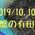 終盤の有田川2019/10.10