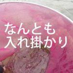 [つりよか] 嫁の鮎釣り 初仁淀川 うまいわー 脱帽負けました Wife, her 1st Niyodo river Ayu wonderful experience