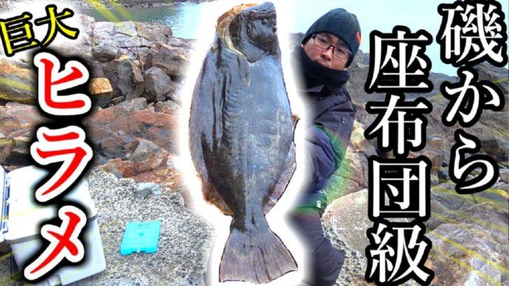 【超巨大】磯から座布団級ヒラメが釣れた!!【ショアジギング】
