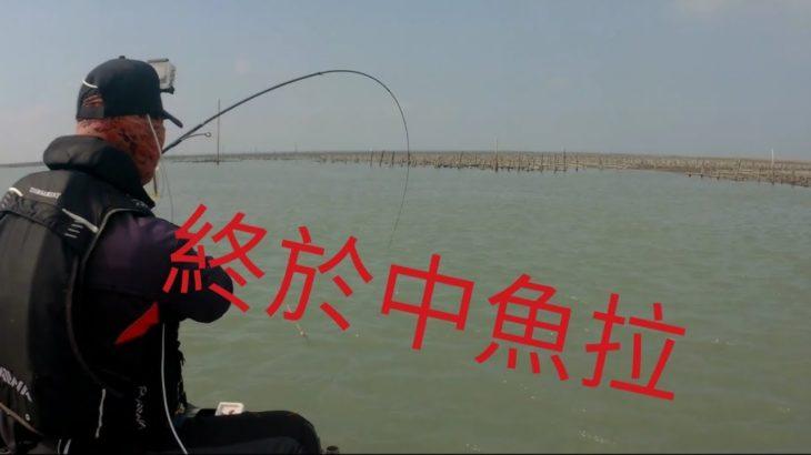 釣魚 東石 黑格 黑鯛 黑牛 磯釣 沉低 打螺 釣螺