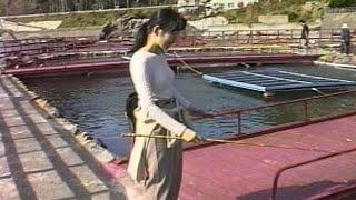 千葉県 磯釣りセンター 鯛を釣った人がいた!