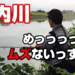 【バス釣り 庄内川 愛知】庄内川にバスはいない。と、思うほど難しかった・・。