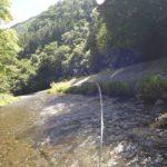 渓流釣り初心者がルアーでネイティブトラウトを釣る。【山梨県小菅川水系】