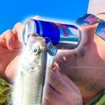 レッドブルで魚が釣れまくる!【redbull vs monster】