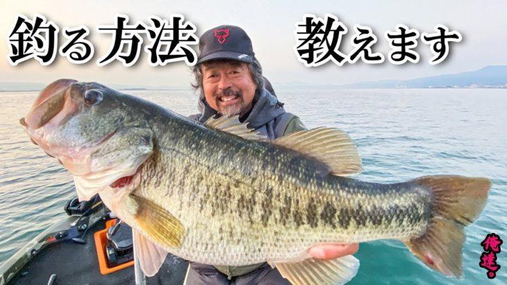 春が来た!琵琶湖の巨大バスはこうやって釣る!