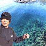 綺麗な海で春イカGET!!