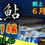 【郡上 長良川】6月下旬の『大鮎』釣り編(Vol.6)
