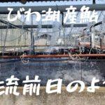 『琵琶湖産アユ放流前日の様子』