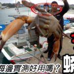 [磯釣沉底] 套螃蟹?新玩具海邊實測..原來漁港不起眼角落藏著這個好東西  2020/03/台灣69J釣魚俱樂部(69J Fishing Club)