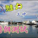 【哈瑪釣魚教室】基隆正濱漁港誘餌調校測試全集~哈瑪竟然只花3小時打完3.5公斤誘餌粉??|磯釣リ· エサ / Fishing in Taiwan