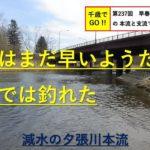 千歳でGO!! 第237回 早春の北海道夕張川の本流と支流で釣りました。ニジマスとイワナが釣れました。