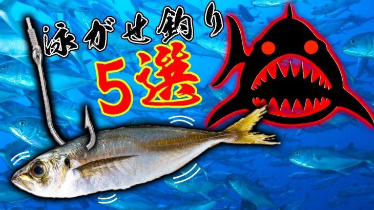 生きた魚をエサにする釣り5選!!