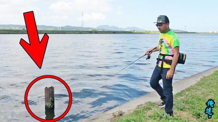 【初心者向け】投げて巻くだけで釣る方法を公開します。