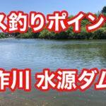 矢作川 水源ダム下 バス釣りポイント