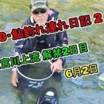 2020 06 02鮎釣れ連れ日記2宮川解禁2日目