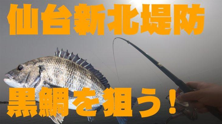 仙台新北堤防で黒鯛を狙う!9年振りの渡船で果たして釣れるのか?