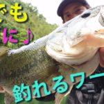 【バス釣り】初心者必見!誰でも簡単に釣れるワームを見つけた!その名も。。ジャッカルのリズムワグ!【bassfishing】