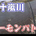 サケ釣り in 五十嵐川【バトルフィッシング Part.7】/Salmon fishing in the Ikarashi river:Japan